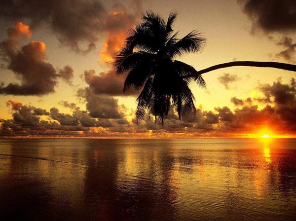 Beautiful Sunset at Beach Cook Islands (South Pacific Ocean)