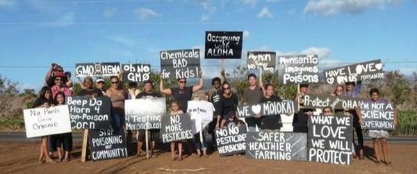 occupy monsanto maui